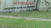 nettieology-mccp