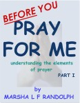 book-cover-before-you-pray-for-me